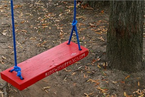 Red Swing Project