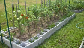 Cinderblock Raised Bed