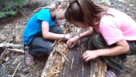 Eating Termites