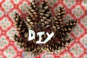 Pinecone DIY logo