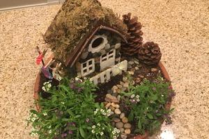 Model Building/Fairy House