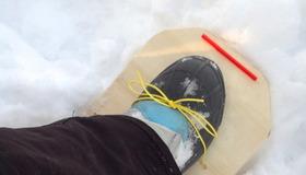 Radical Snowshoe