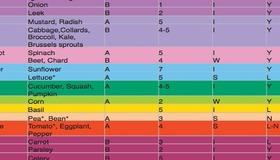 Seed Saving Chart