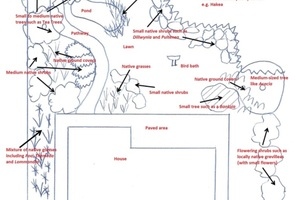 How to Map Your Garden's Shade