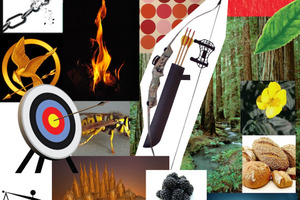 Hunger Games Design Board