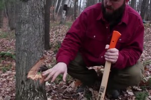 Safe and Efficient Axe use: Felling notch