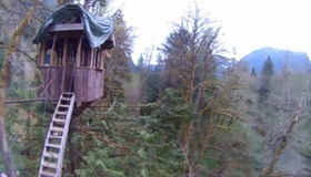 Treehouse Helicopter Cam
