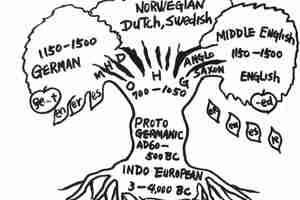 How Did English Evolve