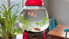 Top Aquarium Instructables