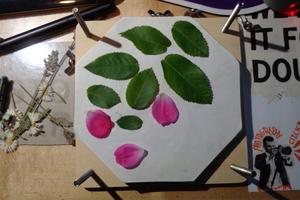 My Plant Press