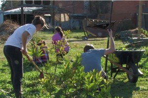 Why Community Gardening is Important
