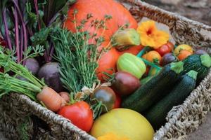 Sharing Your Garden Harvest