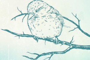 Brave Sparrow