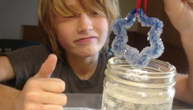Grow a Crystal Snowflake