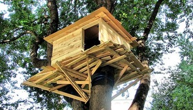 Dimensional Lumber Treehouse