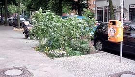 Guerrilla Gardens - Street Gardening