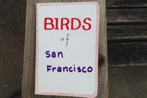Bird Guide Book for SF