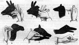 Hand Shadow Guide