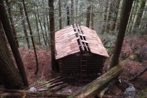 Build a log cabin with your hands for almost free