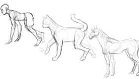 How to Sketch Animal Bodies