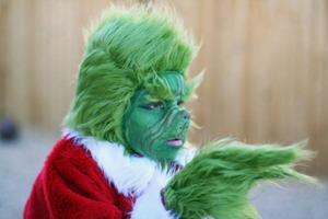 Grinch Costume