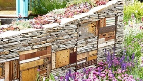 10 Eco-Friendly Insect Habitats