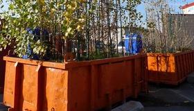 Dumpster Planter