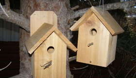 Building the $2 Birdhouse