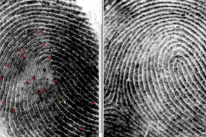 How To Compare Fingerprints