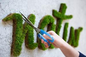 Moss Typography