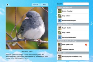 Bird Song ID App
