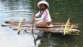 Tree Raft