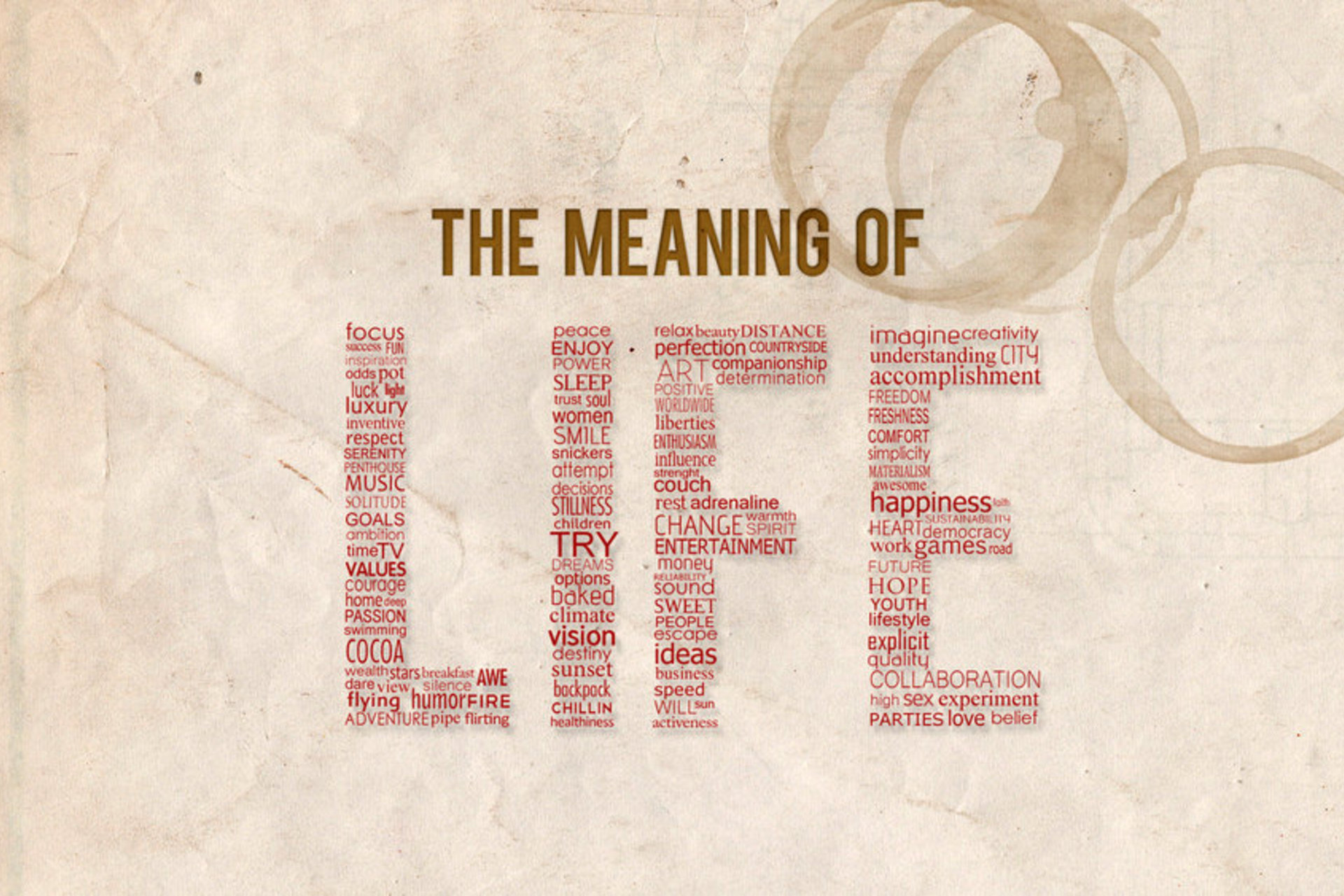 Explain the Meaning of Life - DIY