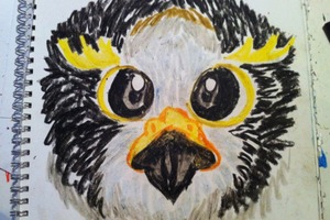 Hawk Avatar Drawing