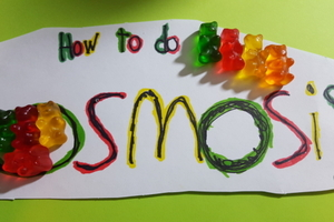 How to do Osmosis!