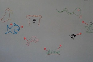 How To Draw a Food Web