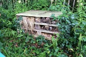 Insect Habitat- bug hotel