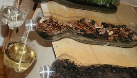 Demonstrate Soil Erosion