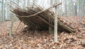Debris Shelter