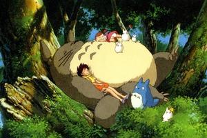 Napping Totoro