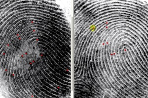 Comparing Fingerprints