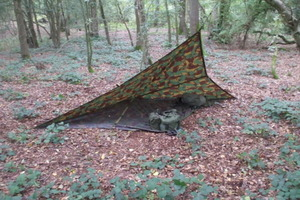 Poncho Tarp Tent
