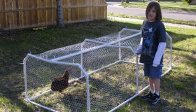 PVC Tubing Chicken Tractor