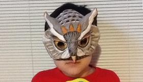 HunterOwl's Mask