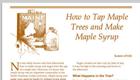 Maple Syrup Print Out Guide