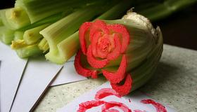Celery Rose
