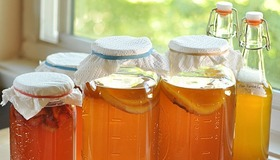 Make Kombucha Tea at Home