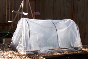 Hoop House Mini-Greenhouse