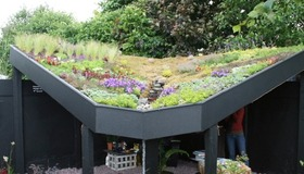 6 Green Roofs You Can Relate To