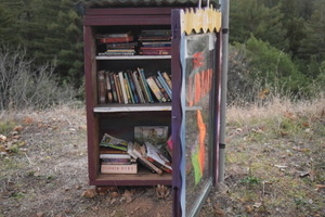 Free Library (multiple photos)